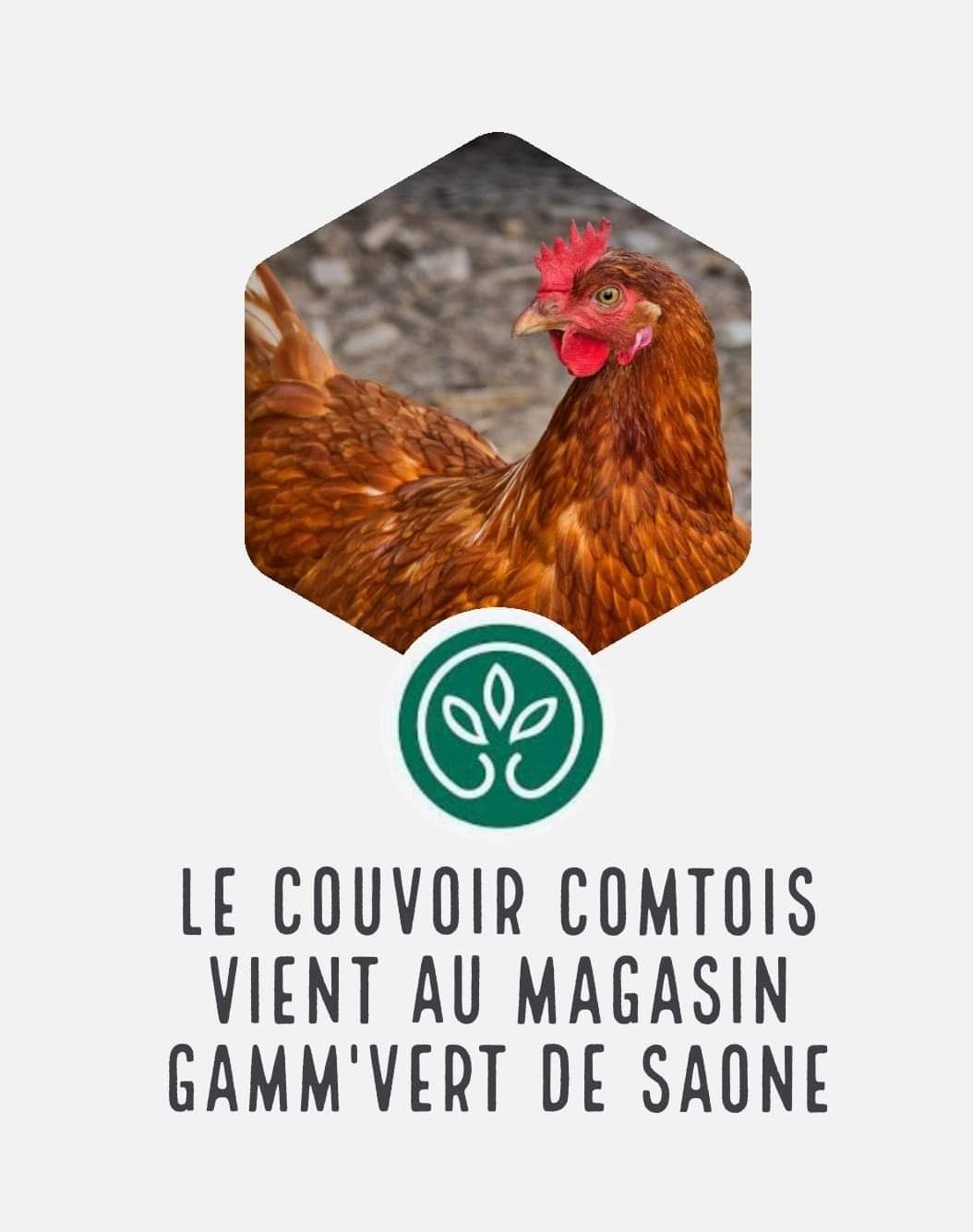 Gamm'vert et coivoir Comtois